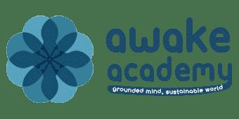 Awake Academy