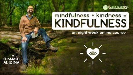 kindfulness Shamash Alidina mindfulness