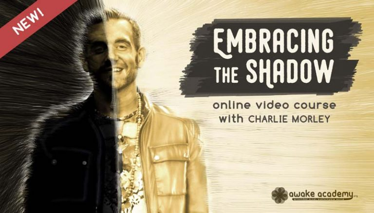 Embracing the Shadow Charlie Morley